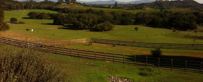 Sonoma County - Soil Culture